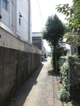 We followed this alley for a while.