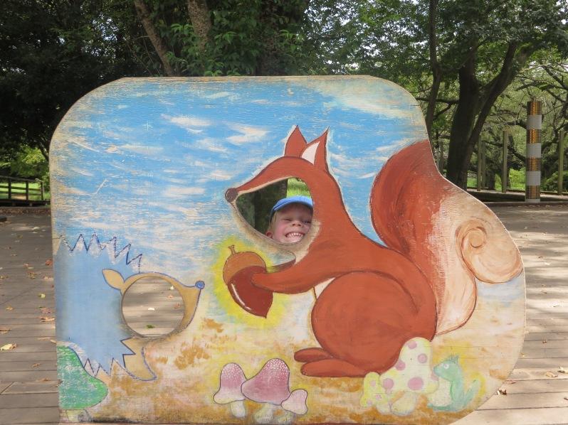 Little squirrel at Showa Kinen Park in Tachikawa in August.